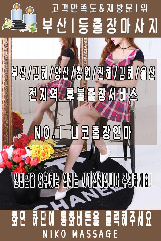 마산회원구출장안마 마산회원구출장마사지
